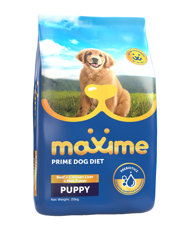 Maxime Puppy 20kg